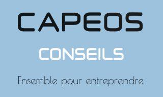 Logo-CAPEOS-CONSEILS